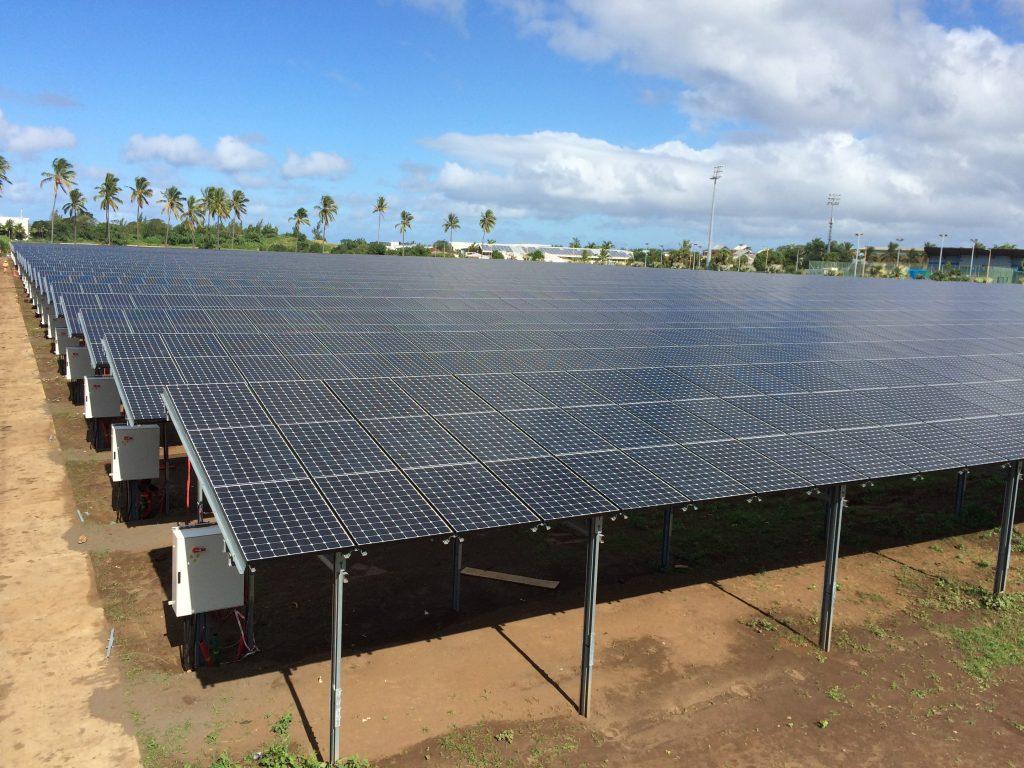 paineis fotovoltaicos e arvores