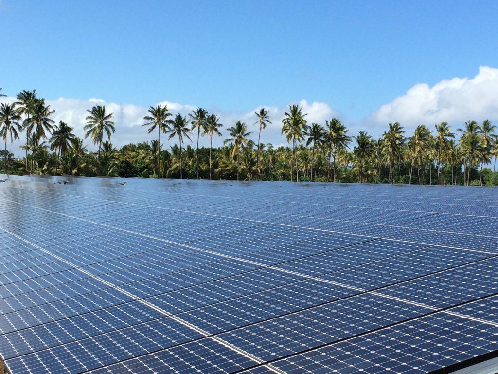 parque fotovoltaico e arvores