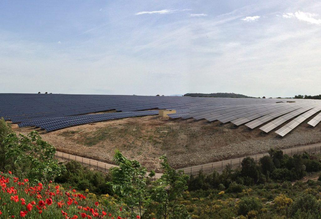 campo com paineis fotovoltaicos e arvores