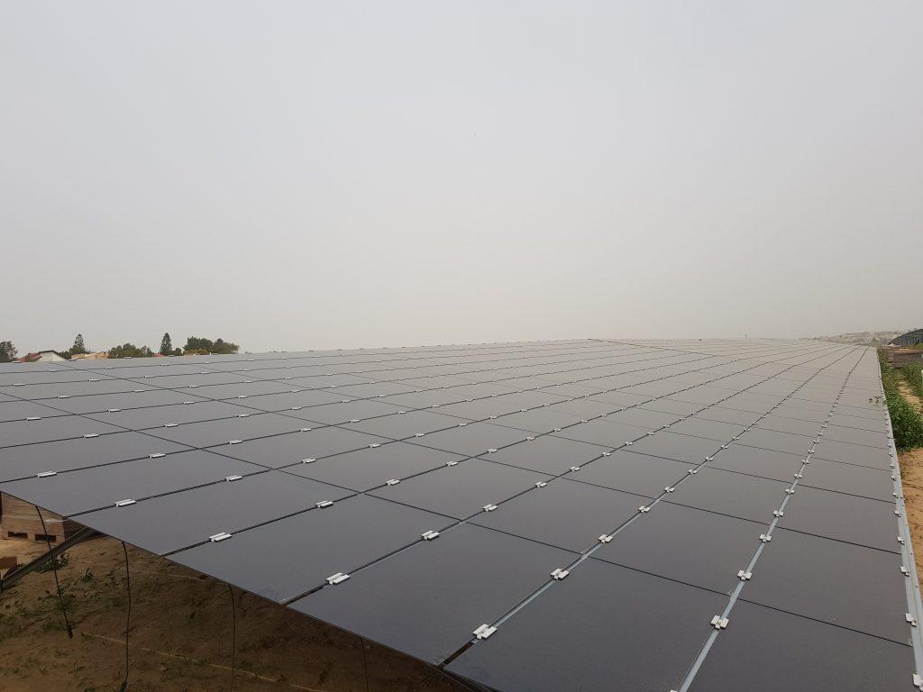 campo com paineis fotovoltaicos